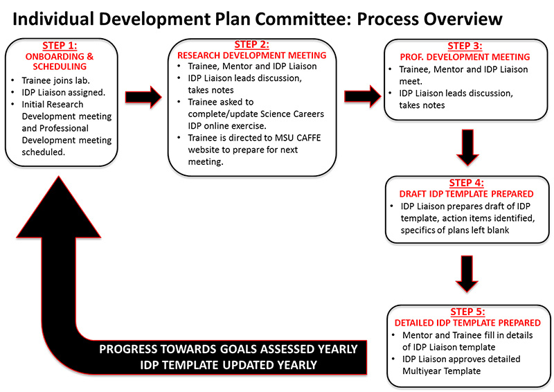 Individual Development Plan Overview